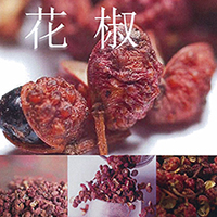 �����ܳ�����ҡʥ�٥�ƥ��롼�ס� ��ܥ�ʥ����祦�� / Sichuan Pepper CO2 Extract (�����奢��ڥåѡ���