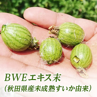 BWEエキス末(Baby Watermelon Extract)〜秋田県産未成熟スイカ由来〜 株式会社ふる里食効研究所